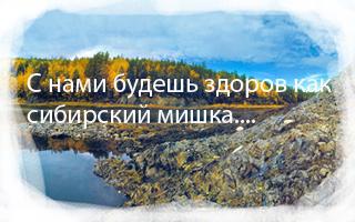 синхровитал 4 сибирское здоровье инструкция - фото 9